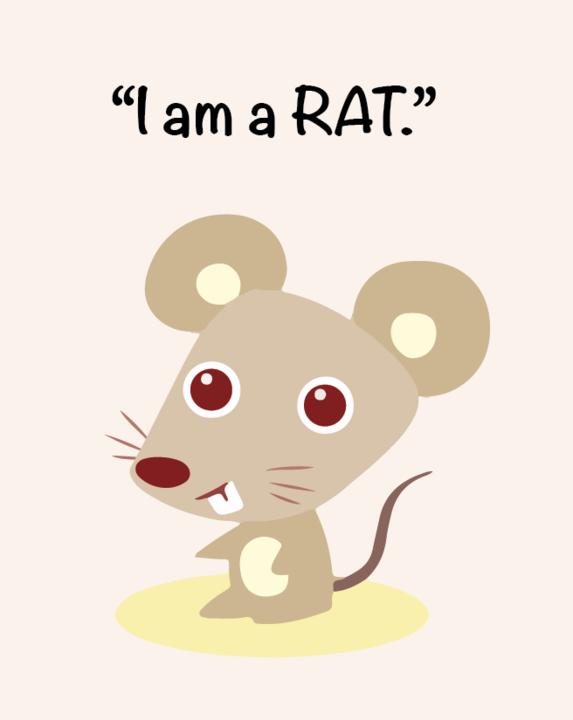 rat_720