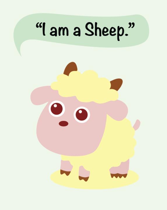 sheep_720